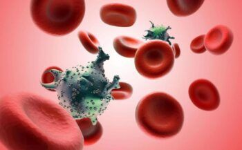 Bệnh bạch cầu dòng tủy ác tính là gì?