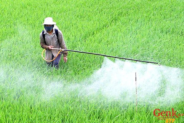 Phòng tránh ung thư máu - Tránh tiếp xúc với các hóa chất độc hại như thuốc trừ sâu, diệt cỏ, benzen, vv…