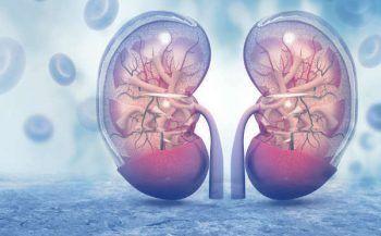 Các yếu tố gây nguy cơ ung thư thận cần tuyệt đối lưu ý