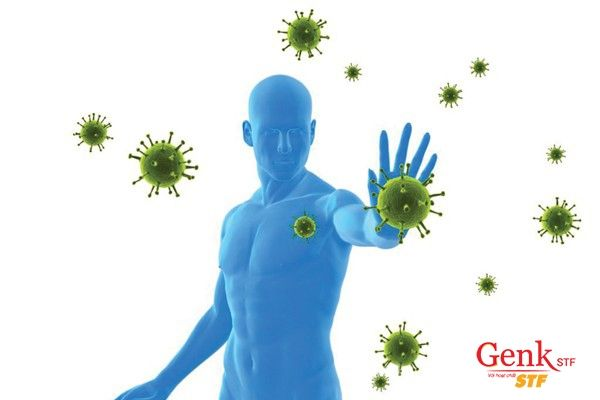 Hệ miễn dịch khi được nâng cao có khả năng loại bỏ tế bào ung thư