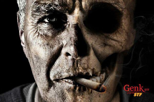Trong khói thuốc lá có chứa 250 hóa chất độc hại và khoảng 50 chất trong này là thủ phạm gây ra ung thư