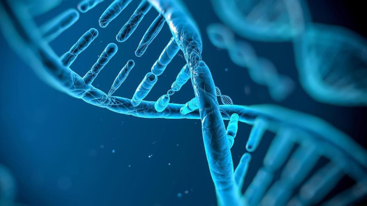 Yếu tố di truyền cũng là một trong những nguyên nhân gây ung thư máu