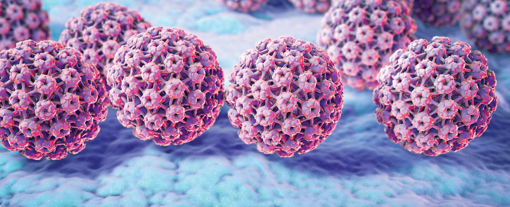 Virus HPV là nguyên nhân chính gây ung thư cổ tử cung giai đoạn đầu phổ biến nhất hiện nay