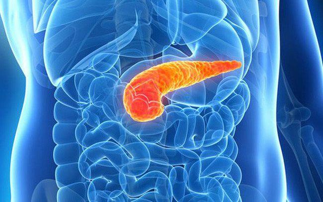 Ung thư tuyến tụy là một trong những loại ung thư đường tiêu hóa nguy hiểm