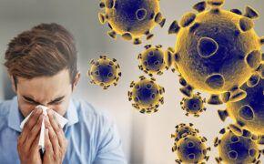 Ăn gì tăng sức đề kháng cho cho cơ thể phòng ngừa virus corona?