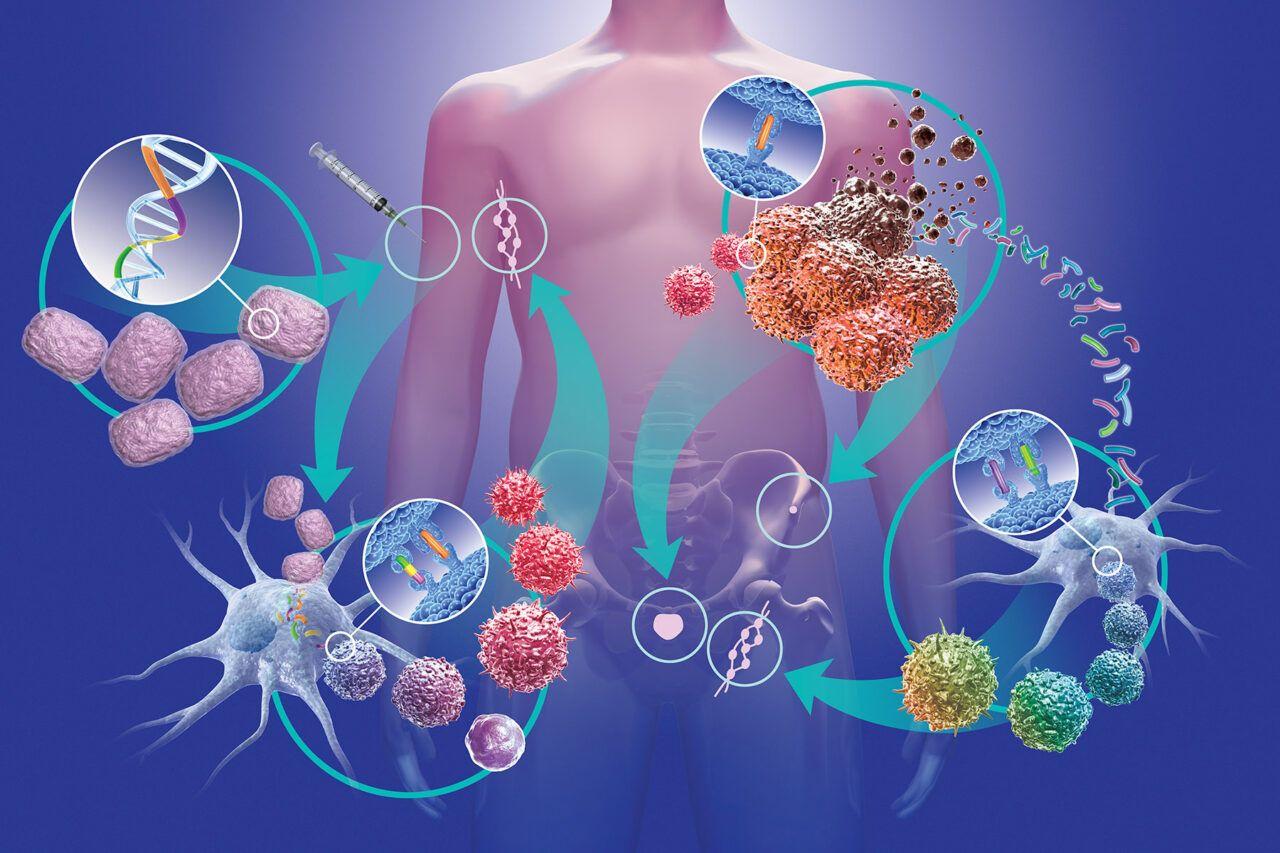 """Các tế bào ung thư có thể """"di căn"""" khi chúng tách ra khỏi khối u và di chuyển đến một vị trí mới trong cơ thể thông qua hệ thống máu hoặc bạch huyết đến các hạch bạch huyết, xương, não, gan hoặc phổi..."""