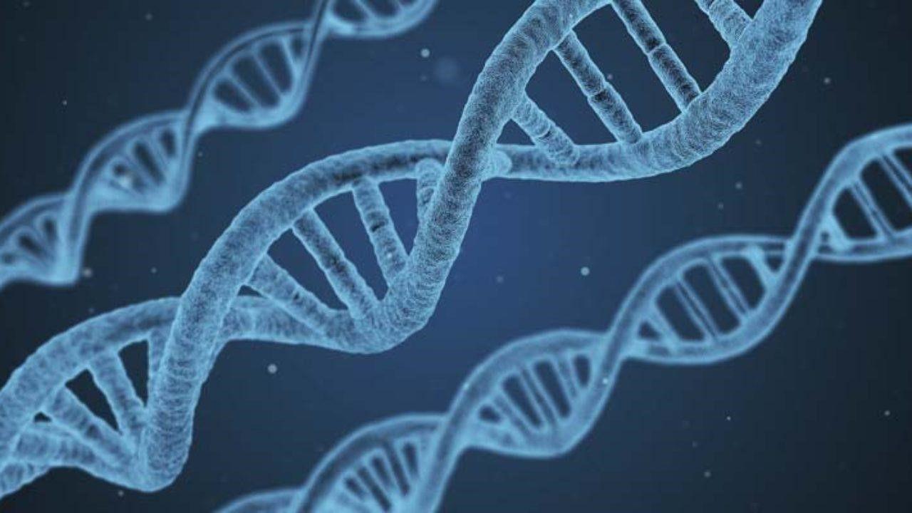Ung thư có di truyền không là thắc mắc của nhiều người