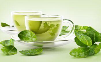 Top 8 loại trà thảo dược hạ mỡ máu hiệu quả