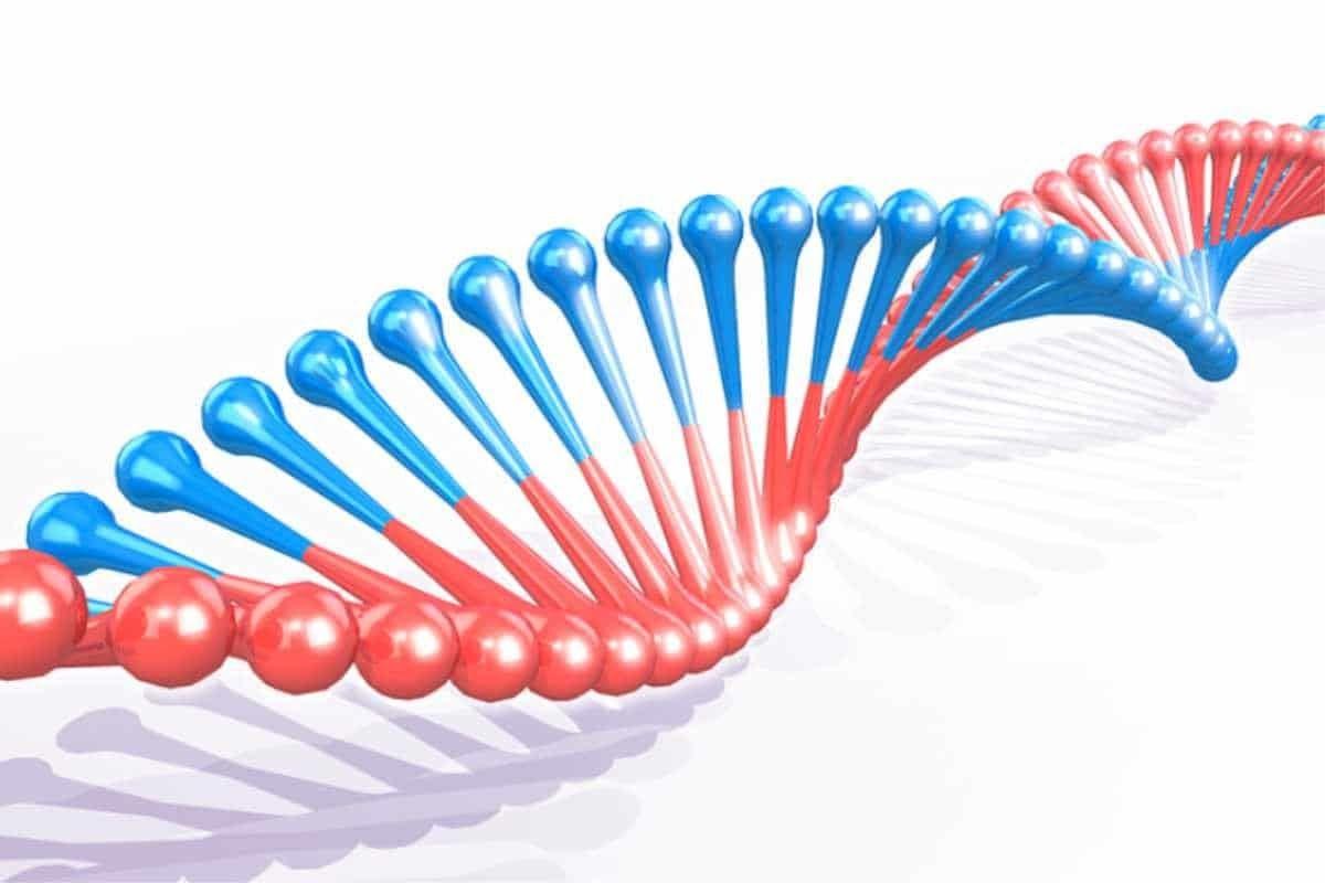 Ung thư di truyền là do sự đột biến gen bất thường