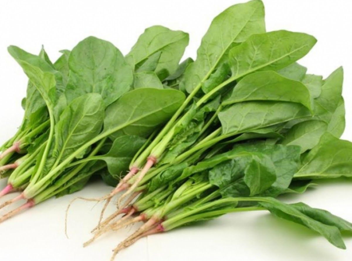 Viêm loét dạ dày nên ăn nhiều rau xanh