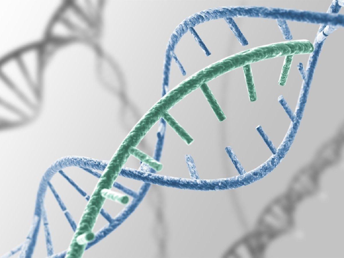 Ung thư có thể di truyền qua các thế hệ