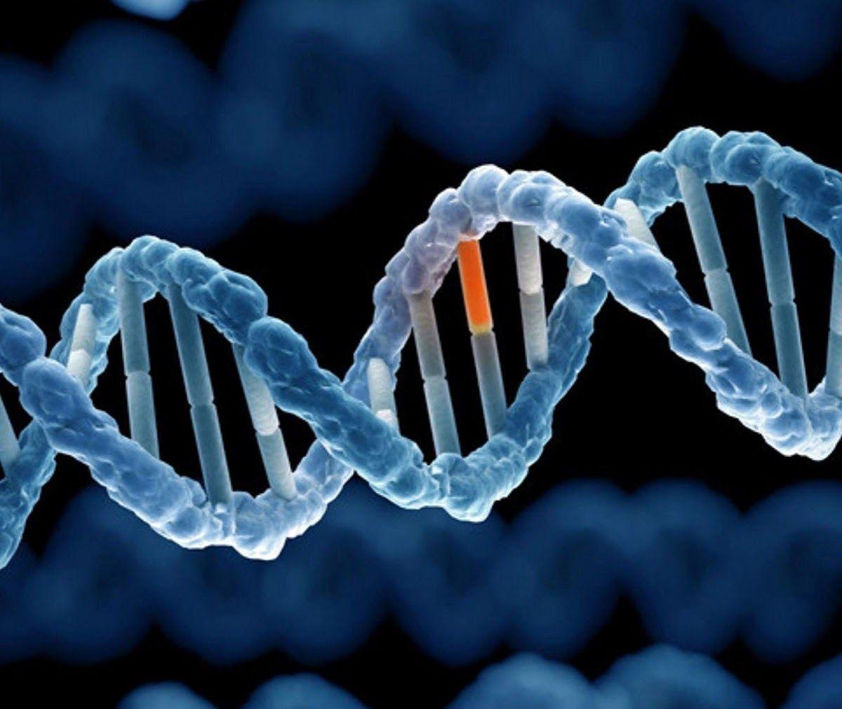 Khoảng 5% ca mắc ung thư đại trực tràng có liên quan đến thừa hưởng gen đột biến