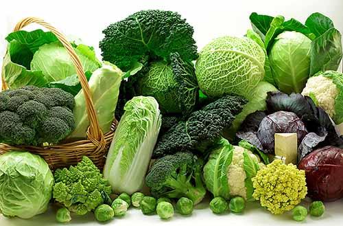 ăn rau xanh tốt cho sức khỏe