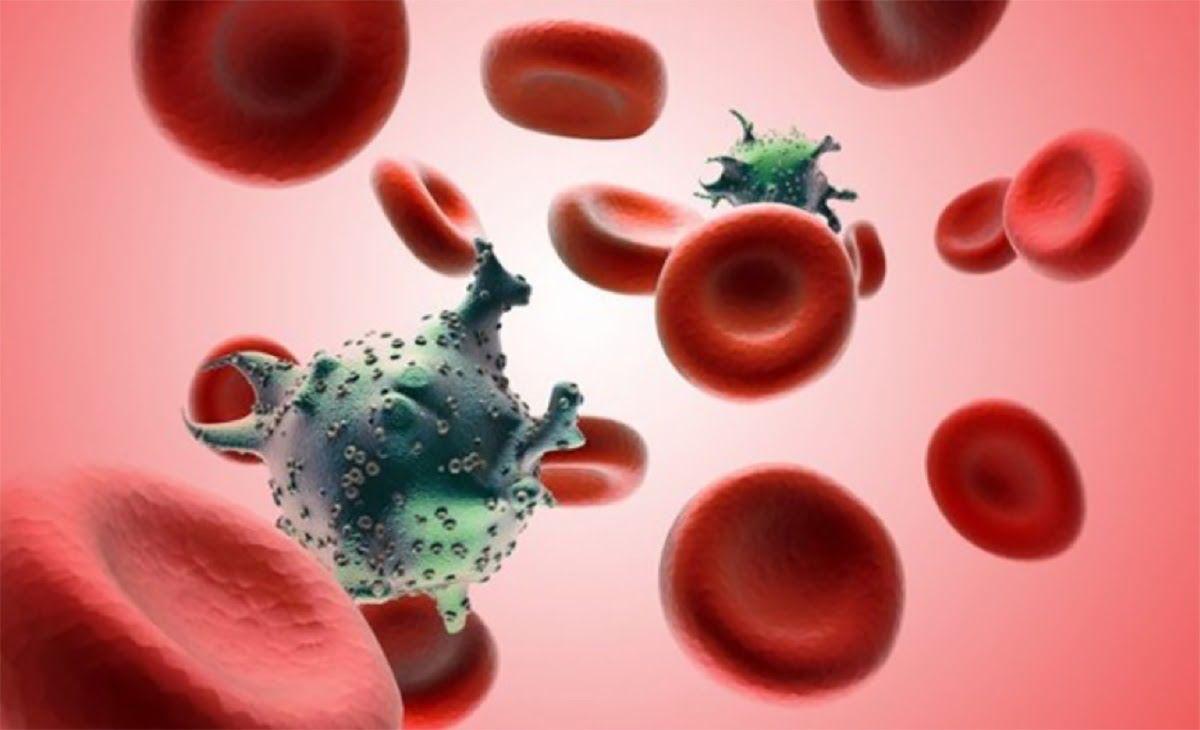 Ung thư máu không có khả năng lây truyền từ người này sang người kia