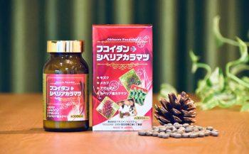 Fucoidan Nhật Bản giá bao nhiêu, có nên dùng không?