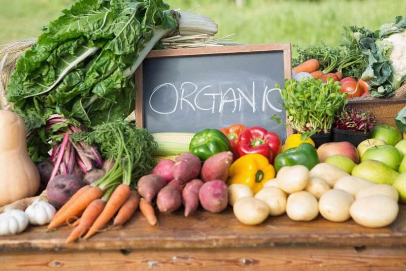 Bệnh nhân ung thư gan nên ăn gì - thức ăn hữu cơ