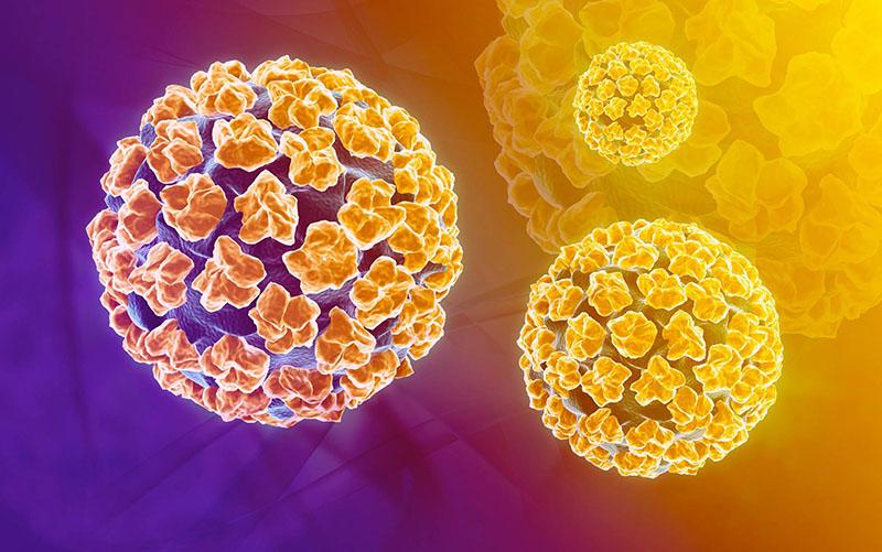 Hơn 90% các ca bệnh ung thư cổ tử cung là do nhiễm virus HPV