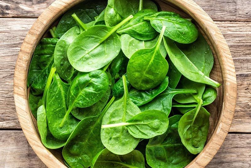 Rau bina với hàm lượng chất dinh dưỡng dồi dào được nhiều người yêu thích