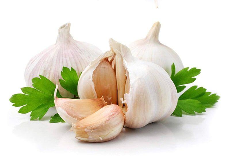 Tỏi tươi chứa Colchicin giúp tăng đề kháng cho cơ thể