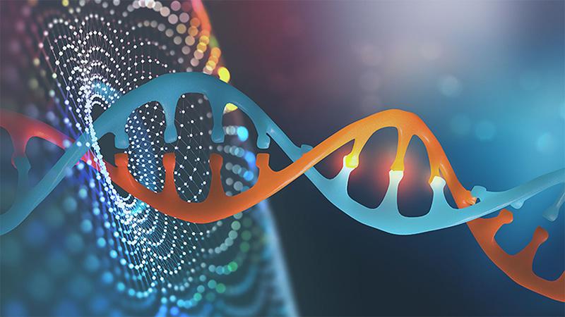 Ung thư tụy có thể di truyền nếu người thân có tiền sử bị bệnh