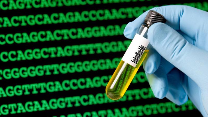 Xét nghiệm ADN nhằm tìm ra những thay đổi trong cấu trúc gen để phát hiện sớm bệnh ung thư máu