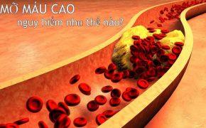 Các phương pháp dự phòng kiểm soát để giảm mỡ máu hiệu quả