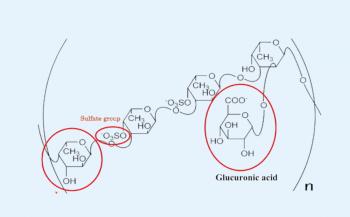 Tìm hiểu thông tin về các tác dụng chính của thuốc fucoidan