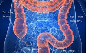 Ung thư đại trực tràng: nguyên nhân, triệu chứng và cách điều trị