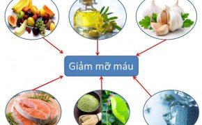 Nên và không nên sử dụng thức ăn giảm mỡ máu nào?